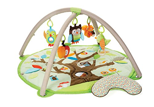 Product Image of the Skip Hop Treetop Friends Gym