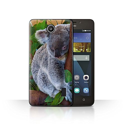 Hülle Für Huawei Y635 Wilde Tiere Koala Design Transparent Ultra Dünn Klar Hart Schutz Handyhülle Case