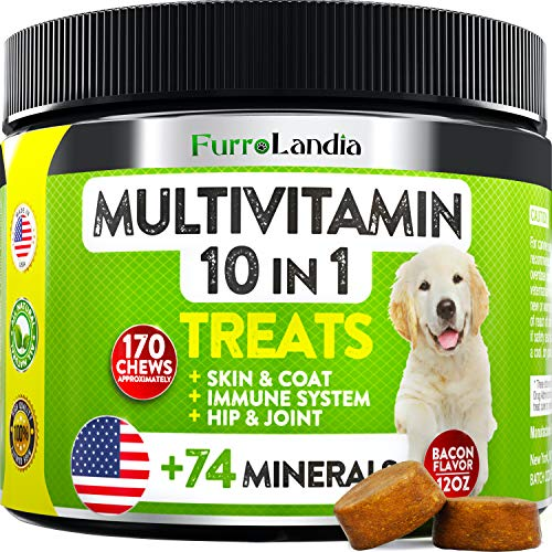 10 In 1 Dog Multivitamin Treats - Essential Dog Vitamins for Hip & Joint Support + Digestion, Skin & Coat, Heart, Immune Health   With Hemp Oil, Kona Berry, Green Lipped Mussel - 170 Soft Chews