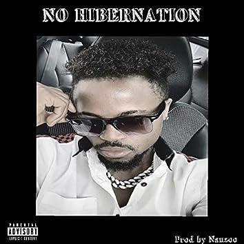 No Hibernation