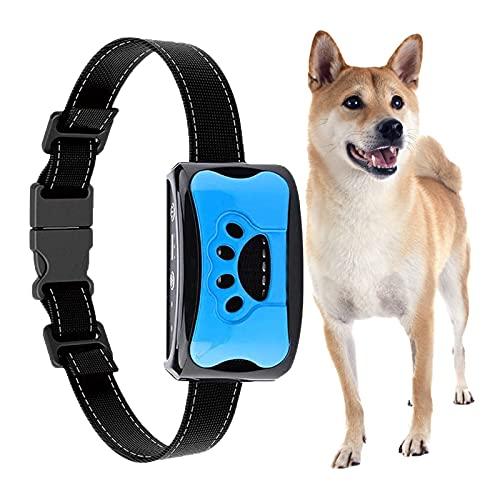 Antibell Halsband Hund Automatisch, Anti bellen Halsband No-Schock Wasserdicht,erziehungshalsband für Hunde wiederaufladbar Geeignet für kleine Hunde (Blau)