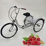 RANZIX Tricycle pour Adulte 24 Pouces 6 Gangs 3 Roues Vélos Senior Bicycle Tricycle Adulte avec Panier et Lampe (Argenté)