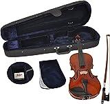 Stingl 1/4 Geige AS-180-V goldbraun handgearbeitet by Höfner