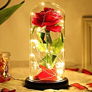 Silk Flower Arrangements HXS Beauty and The Beast Rose Enchanted Rose in Glass Dome Lite Red Rose with LED Lights Flowers Gift for Women, Valentines Flowers Eternal Rose for Valentines Day, Mothers Day