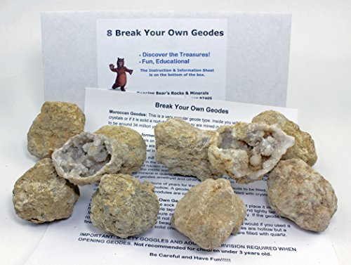 8 Large Break-Your-Own-Geodes (2-3.5 inches) in White remailer box with Educational Information and Instructions, Easy to Open, Dancing Bear Brand by Dancing Bear