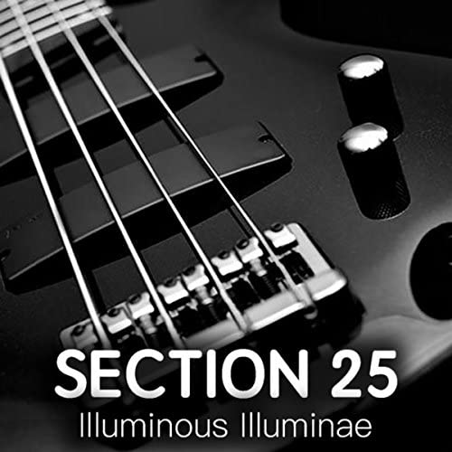 Section 25
