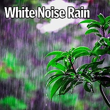 White Noise Rain