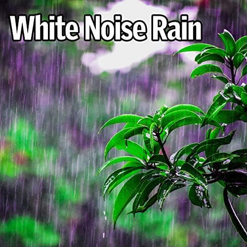 Perfect White Noise, Nature Music & Relaxing Rain