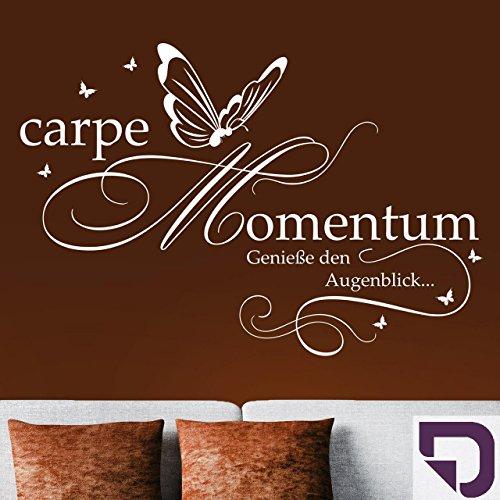 DESIGNSCAPE® Wandtattoo Carpe Momentum - Genieße den Augenblick... 120 x 81 cm (Breite x Höhe) violett DW803200-M-F31