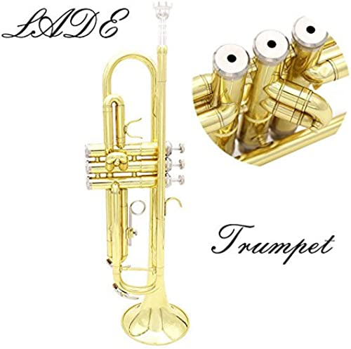 ventas en linea PhilMat Lade trompeta de de de oro bb b trompeta de bronce plana con el caso y accesorios  preferente