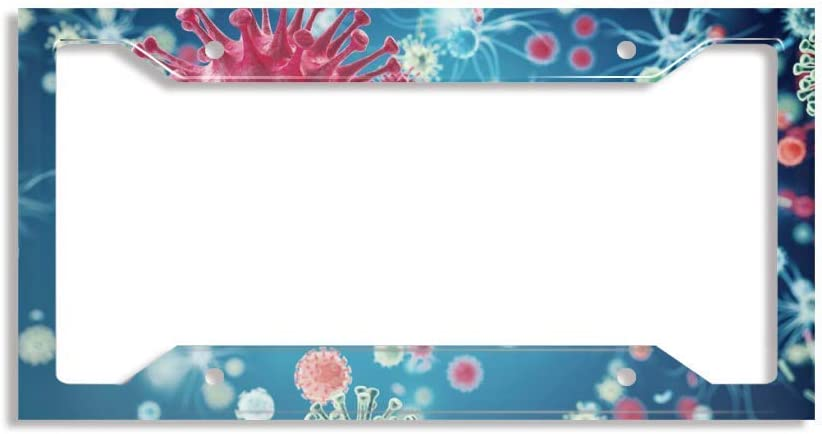 ZXFBC Beauty products Personalized Max 89% OFF License Plate S Car Frame Licence