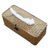 Aiong Caja de pañuelos, Caja de pañuelos de ratán Cubierta Caja de servilleta Rectangular Recipiente de Papel de servilleta Tejida