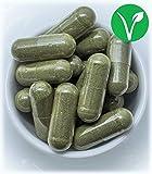 Ortie piquante feuilles 400 gélules en végétal dosées à 400 mg l'unité