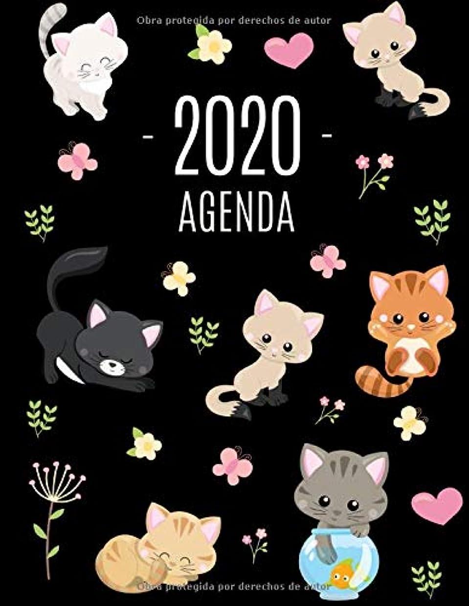 アナリストリボン胃Gatos Agenda 2020: Planificador Mensual que Inspira Productividad | Con Calendario Mensual 2020
