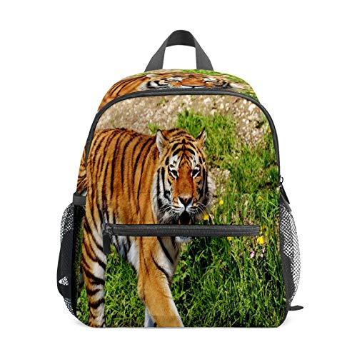 Mochila infantil para niños de 1 a 6 años de edad, mochila perfecta para niños y niñas caminando en el jardín de infancia, caza de tigre para comida.