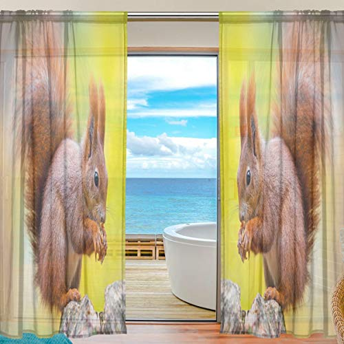 BKEOY Voile-Vorhänge für Fenster, Herbst, Tiere, Eichhörnchen, Vorhang für Zuhause, Wohnzimmer, Schlafzimmer, Tür, Küche, 139,7 x 198,1 cm, 2 Paneele, Polyester, multi, 55 x 84 inches
