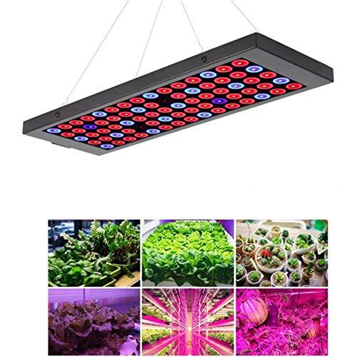 Het licht van de planten van het aquarium, de led-plant met broeikas vullen het licht van de plant uit het volledige spectrum volledig waterdicht.
