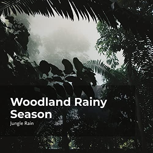 Nature and Rain, Jungle Rain & Deep Rain Sampling