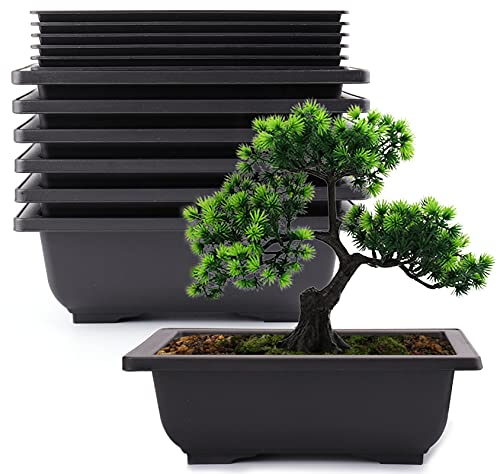 Yesland 6 Pack Bonsai Training Pots - 9 Inches Classic Deep Humidity Trays with Built in Mesh - Plastic Square Pot & Bonsai Plants Growing Pots