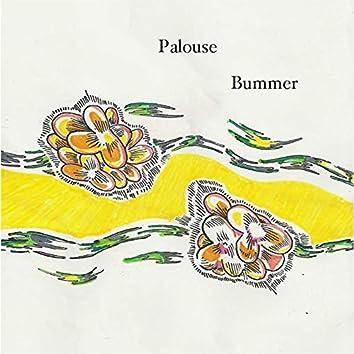 Palouse Bummer