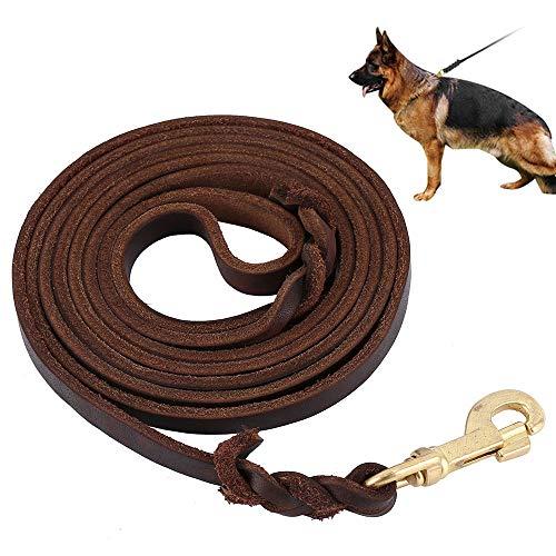 ODOMY Leder Hundeleine, Hundeleine Lederleine für Hunde Starke und Weiche Hunde Lederleine Hochwertig Langlebig Gehleine Trainingsleine für Mittlere/Große Hunde (3 M)