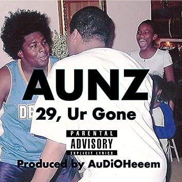 29, Ur Gone