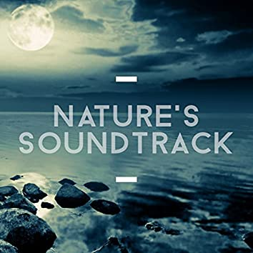 Nature's Soundtrack