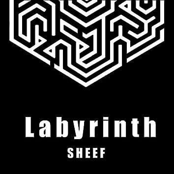 Labyrinth (Acoustic)