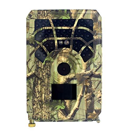 Cámara de seguimiento, visión nocturna impermeable 24MP 1296P Cámara de exploración de caza para monitoreo de vida silvestre, función de conexión Wifi, LCD TFT de 2.4 pulgadas