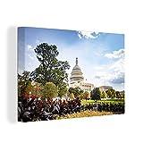 Leinwandbild - Blumen und Bäume vor dem Capitol in