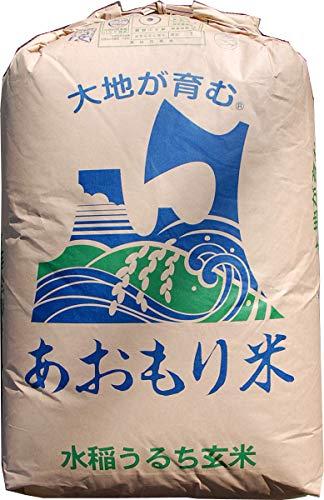 【元年産】玄米 10kg 青森 青天の霹靂(へきれき) (7分づき米に)