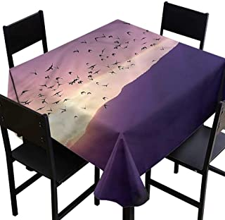 Birds Water Resistant Table Cloth Golan Heights Northern Israel Party Decorations Table Cover Cloth 70 x 70 Inch