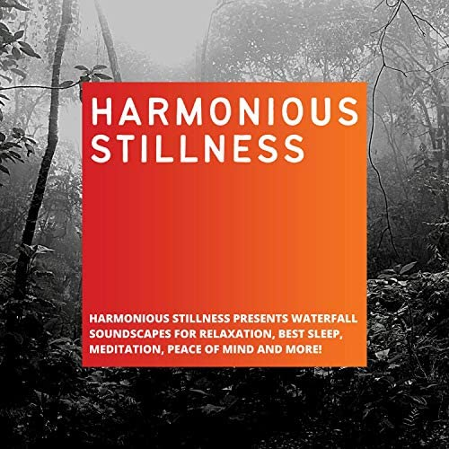 Harmonious Stillness