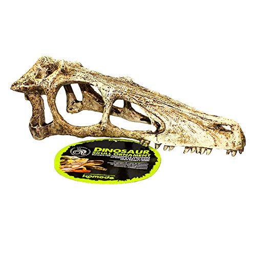 Komodo Raptor Tête de Mort, XL