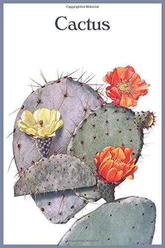 Cactus: Notitieboek , gelinieerd, 120 pagina's, 15.24 x 22.86 cm (ongeveer A5), zachte kaft. Plant met oranje gele bloemen.