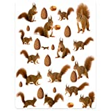 SXCHEN Blankets Plush Sofa Bed Throw Blanket Cute Squirrel Nuts Pine Nuts 50'x80'