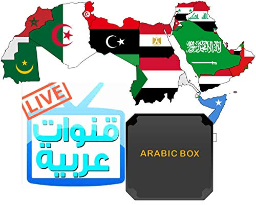 2021 Arabic TV Arab Box Quad Core ARM Processor Android 7.0 System