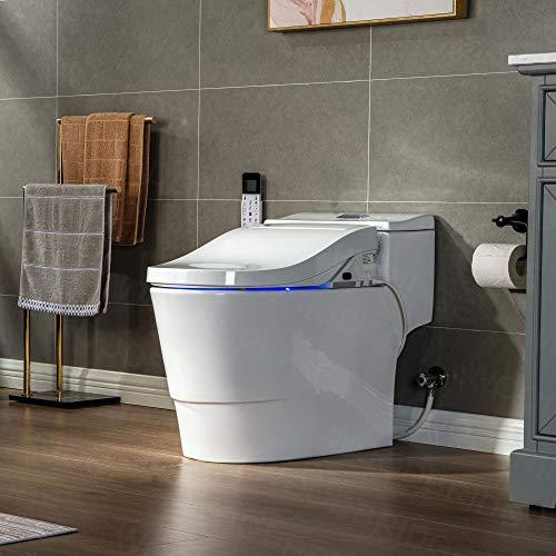 The Best Smart Toilet in 2021