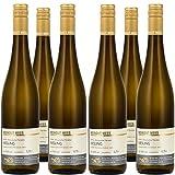 Weingut Mees RIESLING FEINHERB 2017 Weißwein Deutschland Nahe (6 x 750 ml) 100% Riesling