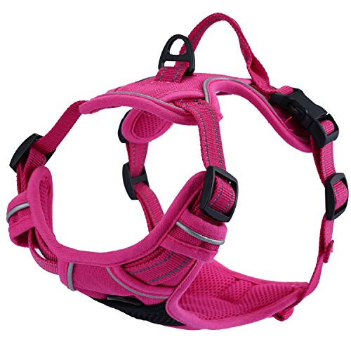 Einstellbare, nicht gezogene Hundegeschirre Haustierweste mit 3m reflektierendem, weich gepolstertem Schwerlastgriff für Training oder Gehen (XS-Brust Größe: 13-17in, Violett)