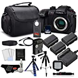 Panasonic Lumix DC-GH5S Mirrorless Micro Four Thirds Digital Camera DC-GH5S- Platinum Plus + Level Bundle International Version
