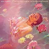 Songtexte von Nina Nesbitt - The Sun Will Come Up, the Seasons Will Change