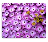 Phlox Lomatium Purple Flowers small bunches field yellow petals Mouse Pads Customized Made to Order Support Ready 9 7/8 Inch (250mm) X 7 7/8 Inch (200mm) X 1/16 Inch (2mm) Eco Friendly Cloth with Neoprene Rubber Liil Mouse Pad Desktop Mousepad Laptop Mousepads Comfortable Computer Mouse Mat Cute Gaming Mouse_pad