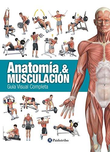 Anatomía & musculación: Guía visual completa