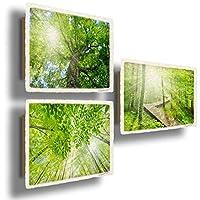 和紙 アートパネル 3枚 組 セット 初夏 緑 木 「太陽に輝く新緑の森」 24x16cm 木製パネル付 絵 絵画 インテリア 壁掛け 壁飾り 風水 玄関