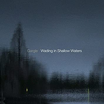 Wading in Shallow Waters
