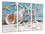 Cuadro Fotográfico Paisaje Mar Vintage, Conchas, Caracolas, Playa, Arena Tamaño total: 97 x 62 cm XXL