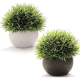 FEILANDUO Lot de 2 plantes artificielles avec pots – Décoration de bureau pour salle de bain – Bonsaï d'intérieur (blanc…