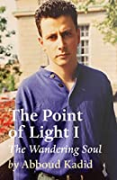 The Point of Light I