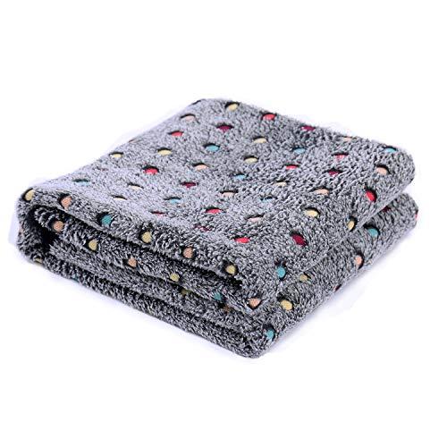 PAWZ Road Pet Dog Blanket Fleece Fabric Soft and Warm Pet Throw Medium (40X30 Inches) Dark Gray Blanket